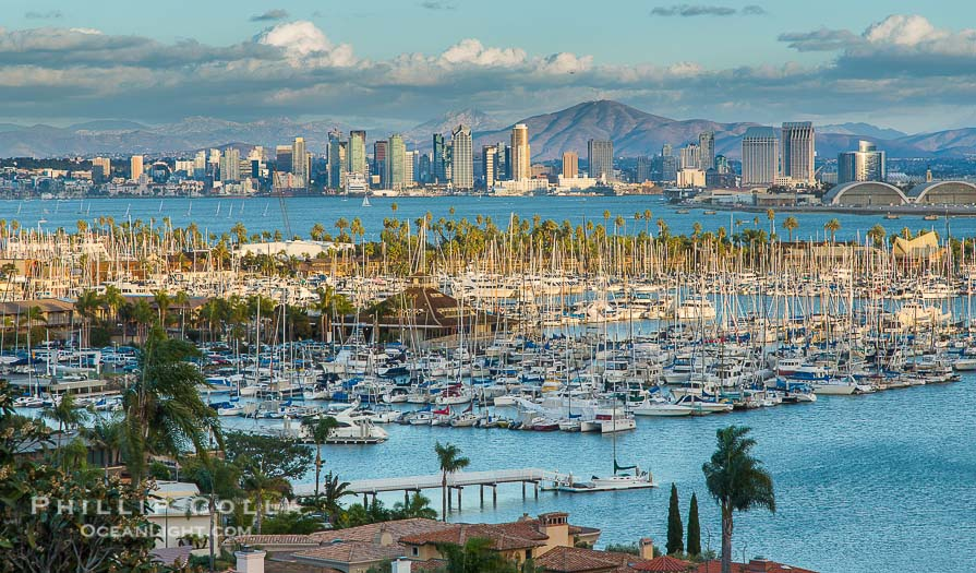 beautiful-san-diego-city-skyline-view-picture-28005-481443.jpg